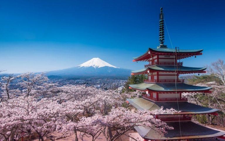 Destinazione Giappone: accordo commerciale tra Meridiano e Prestige